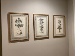 Museum Quality Framing & Art Services