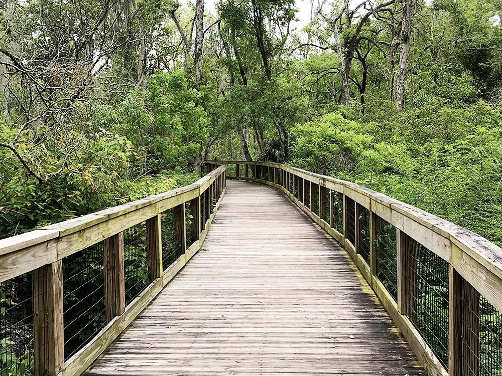 Tree Hill Nature Center 7152 Lone Star Rd, Jacksonville
