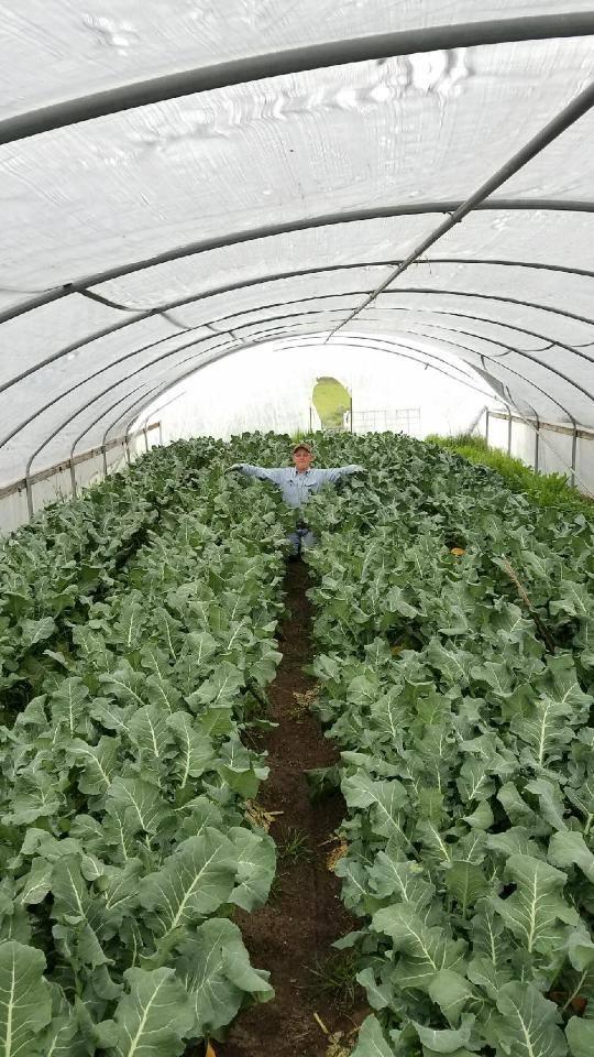Bigham Farms 9445 Pumice Ln, Medford